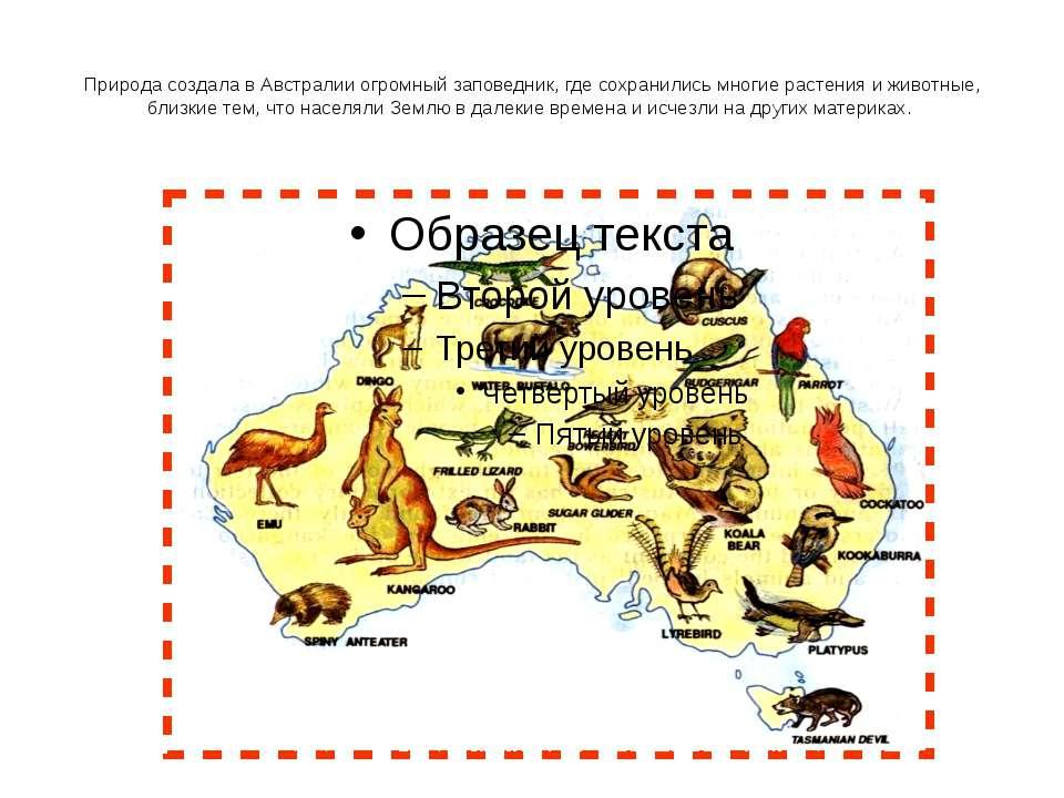 Природа создала в Австралии огромный заповедник, где сохранились многие расте...