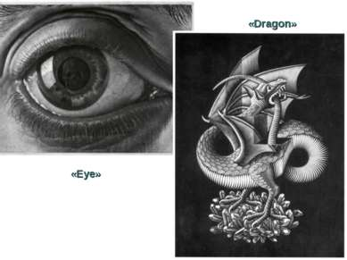 «Dragon» «Eye»
