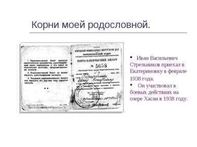 Корни моей родословной. Иван Васильевич Стрельников приехал в Екатериновку в ...