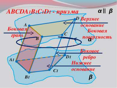 α β α β || A B C1 D A1 B1 D1 C ABCDA1B1C1D1 - призма Верхнее основание Нижнее...
