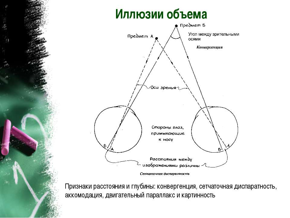 Иллюзии объема Признаки расстояния и глубины: конвергенция, сетчаточная диспа...