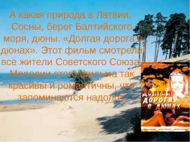 А какая природа в Латвии. Сосны, берег Балтийского моря, дюны. «Долгая дорога...
