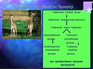 Механизм эволюции по Ламарку Изменение условий среды Изменение потребностей ж...