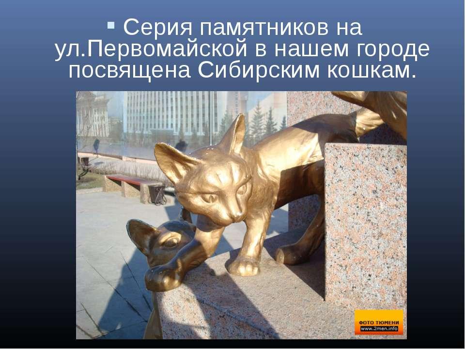 Серия памятников на ул.Первомайской в нашем городе посвящена Сибирским кошкам.