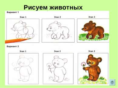 Рисуем животных