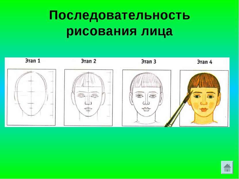 Последовательность рисования лица