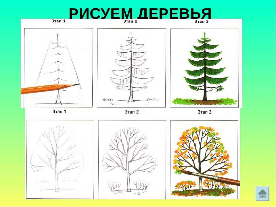 Онлайн как рисовать деревья