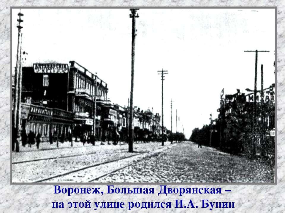 Воронеж, Большая Дворянская – на этой улице родился И.А. Бунин