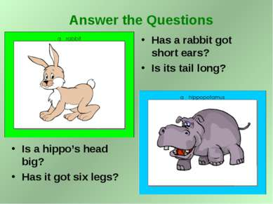 Is a hippo's head big? Has it got six legs? Has a rabbit got short ears? Is i...