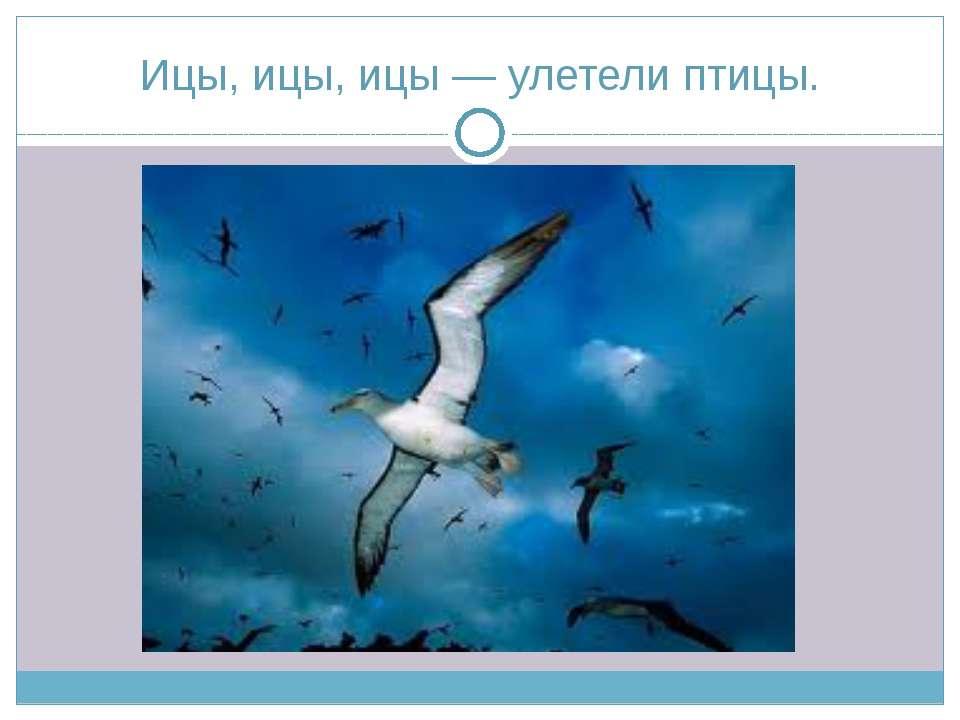 Ицы, ицы, ицы — улетели птицы.