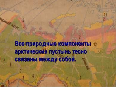 Все природные компоненты арктических пустынь тесно связаны между собой.