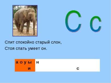 Спит спокойно старый слон, Стоя спать умеет он.