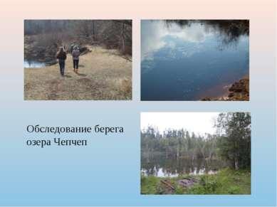 Обследование берега озера Чепчеп