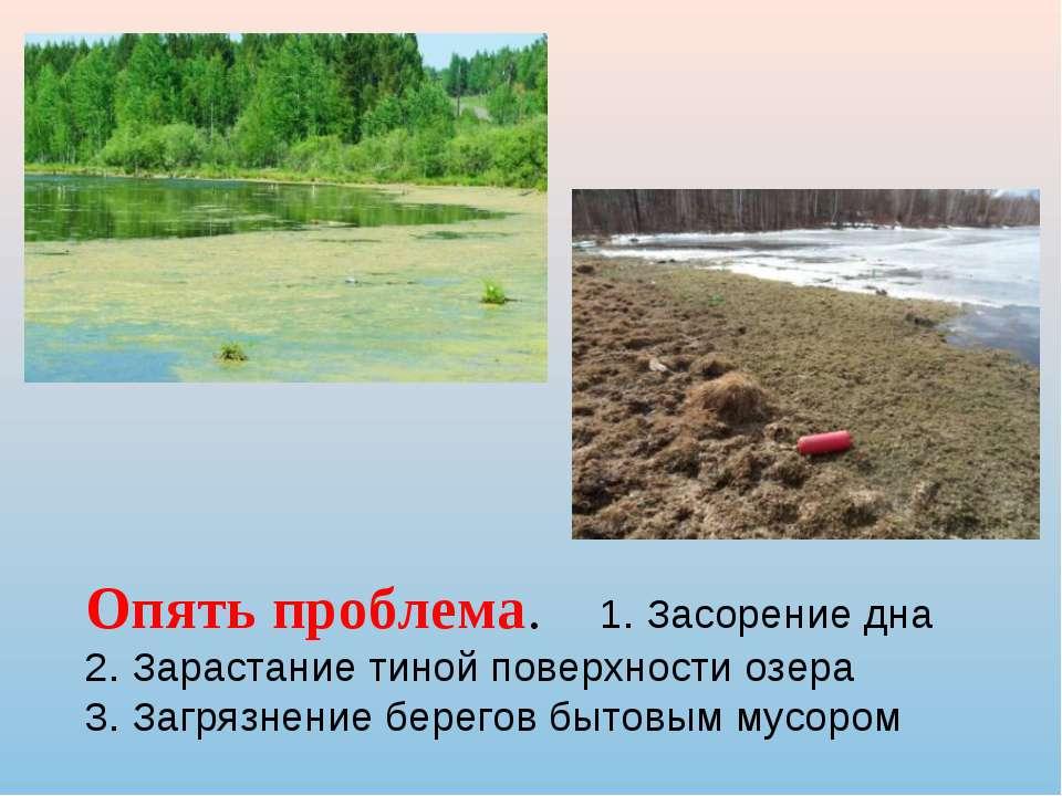 Опять проблема. 1. Засорение дна 2. Зарастание тиной поверхности озера 3. Заг...