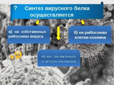 ? Синтез вирусного белка осуществляется а) на собственных рибосомах вируса б)...