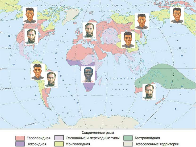 Выход Европеоидная Монго-лоидная Негро- идная Северная Южная Центральная и Во...
