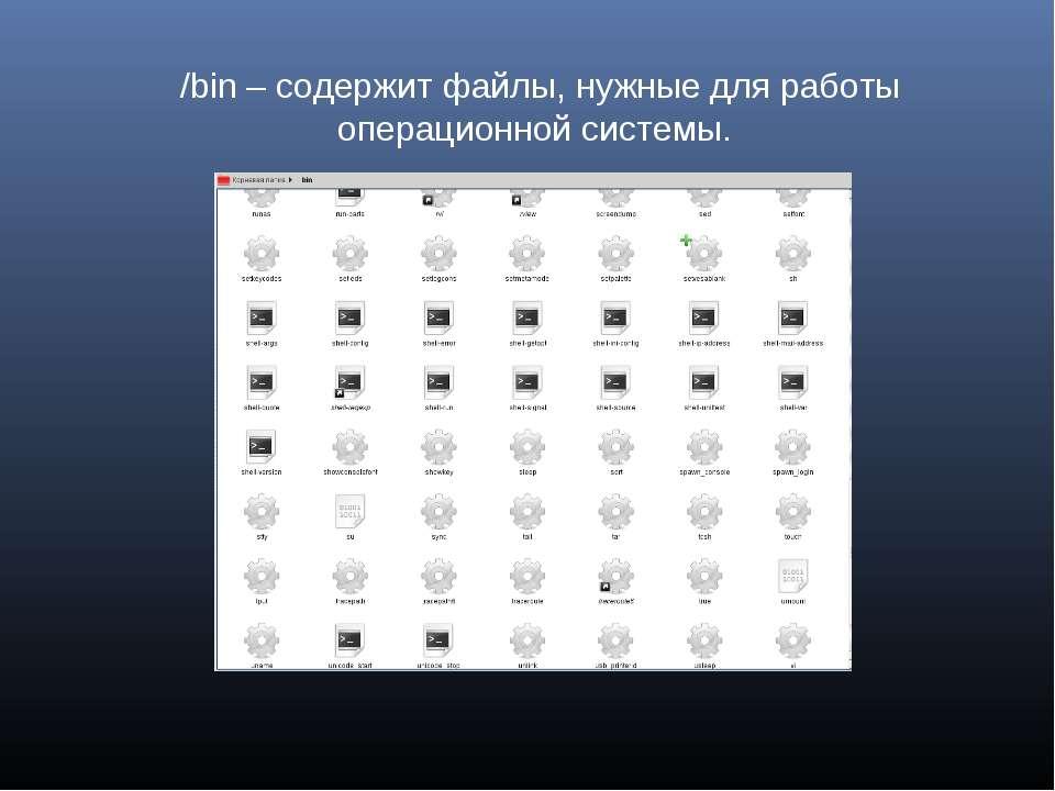 /bin – содержит файлы, нужные для работы операционной системы.