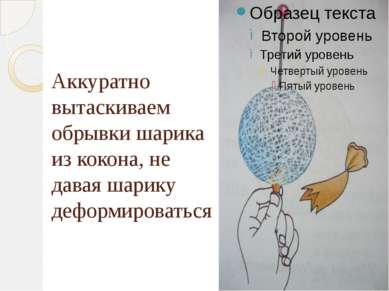 Аккуратно вытаскиваем обрывки шарика из кокона, не давая шарику деформироваться