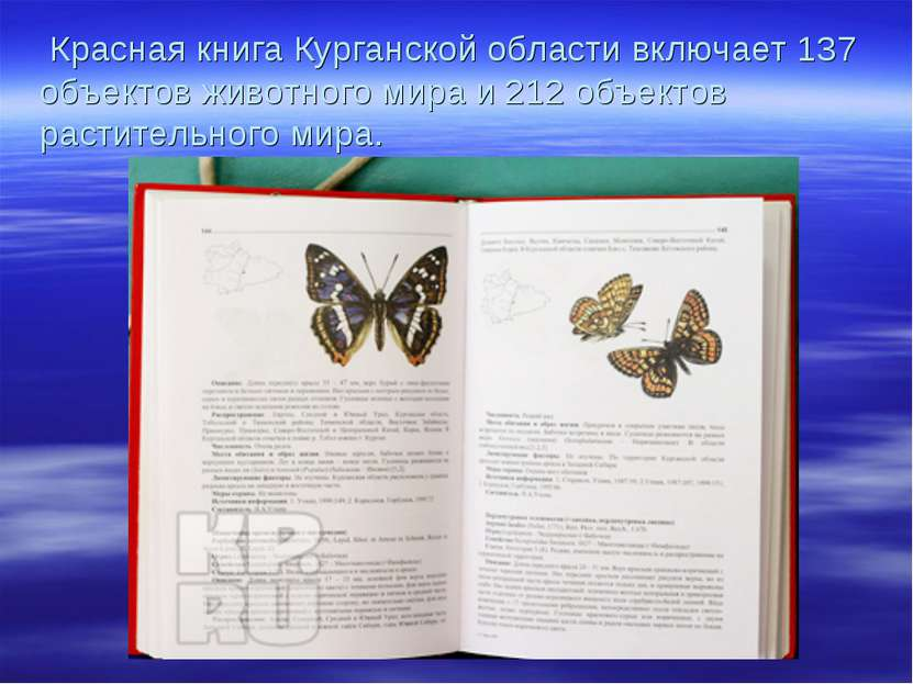 Красная книга Курганской области включает 137 объектов животного мира и 212 о...