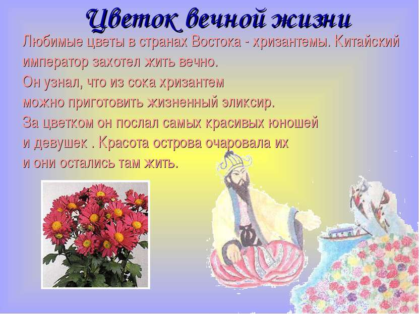 Цветок вечной жизни Любимые цветы в странах Востока - хризантемы. Китайский и...