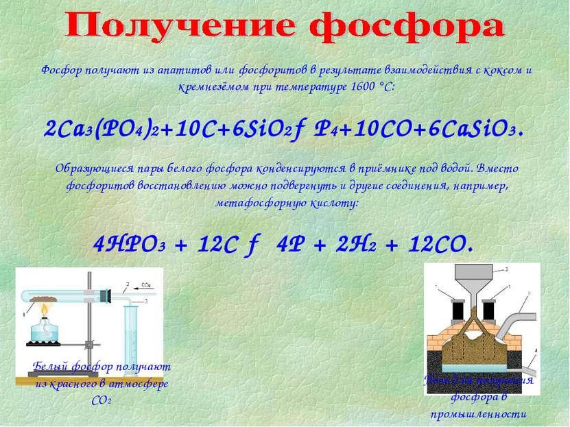Фосфор получают из апатитов или фосфоритов в результате взаимодействия с кокс...