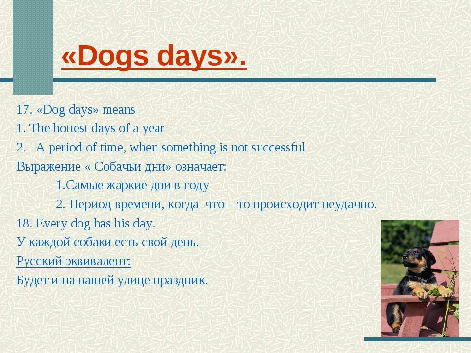 «Dogs days». 17. «Dog days» means 1. The hottest days of a year 2.   A period...