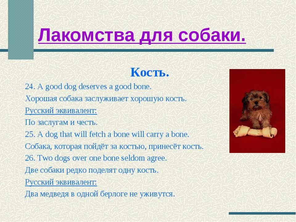 Лакомства для собаки. Кость. 24. A good dog deserves a good bone. Хорошая соб...