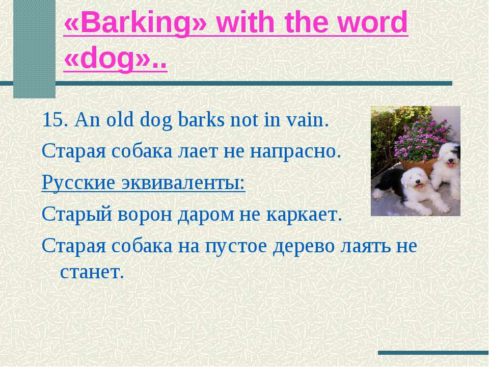«Barking» with the word «dog».. 15. An old dog barks not in vain. Старая соба...