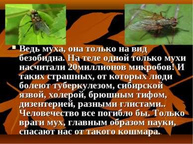 Ведь муха, она только на вид безобидна. На теле одной только мухи насчитали 2...