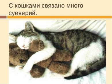 С кошками связано много суеверий. Веками в Европе кошек замуровывали в стены ...