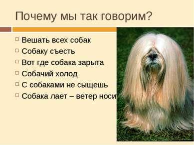 Почему мы так говорим? Вешать всех собак Собаку съесть Вот где собака зарыта ...