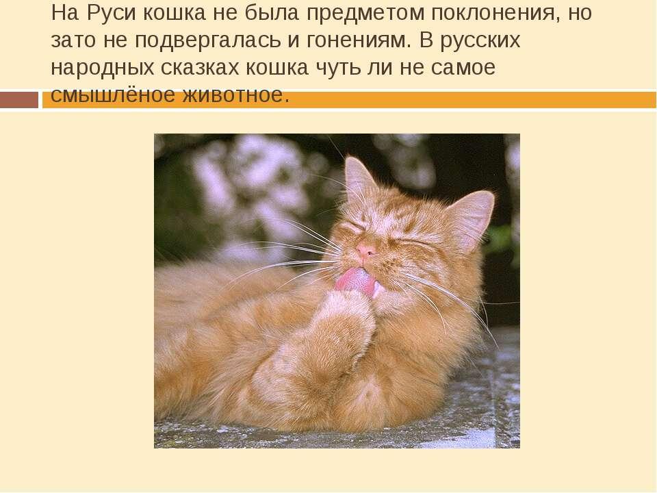 На Руси кошка не была предметом поклонения, но зато не подвергалась и гонения...