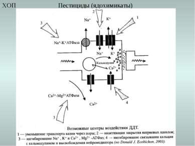 Пестициды (ядохимикаты) ХОП