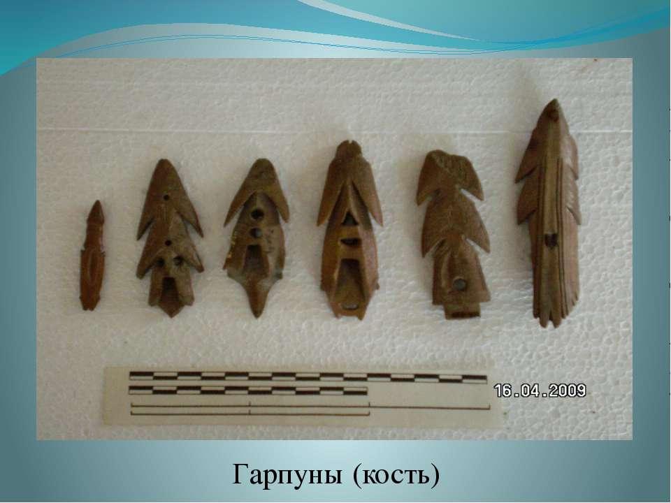 Гарпуны (кость)