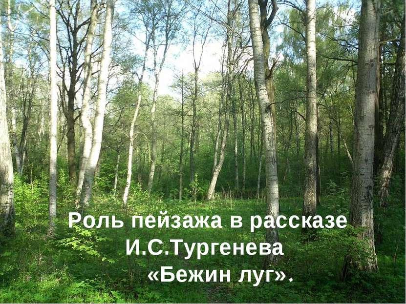 Роль пейзажа в рассказе И.С.Тургенева «Бежин луг».