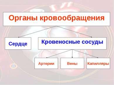 Органы кровообращения Сердце Кровеносные сосуды Артерии Вены Капилляры