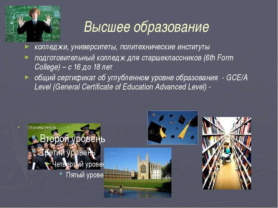 Высшее образование колледжи, университеты, политехнические институты подготов...