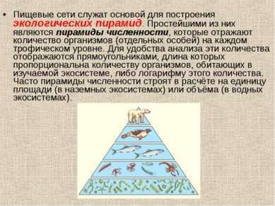 Пищевые сети служат основой для построения экологических пирамид. Простейшими...