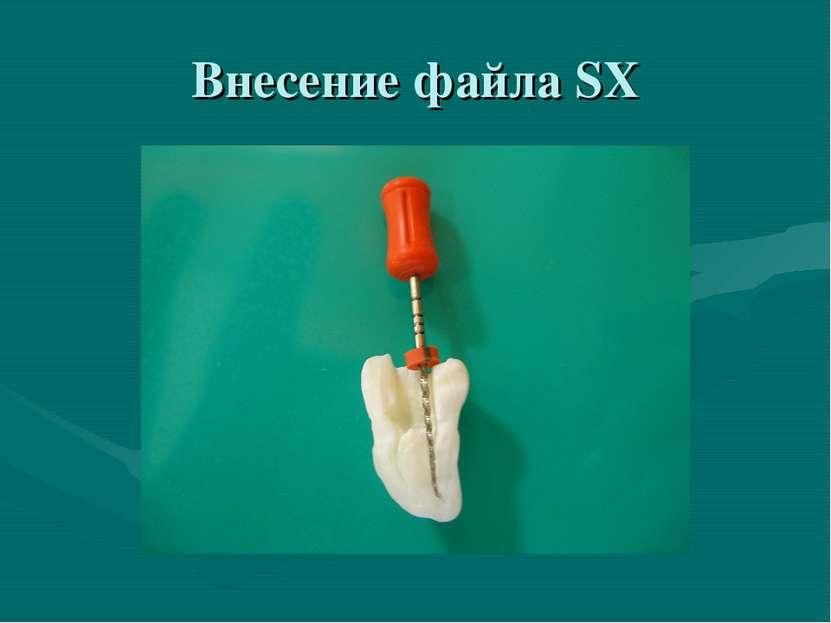 Внесение файла SX