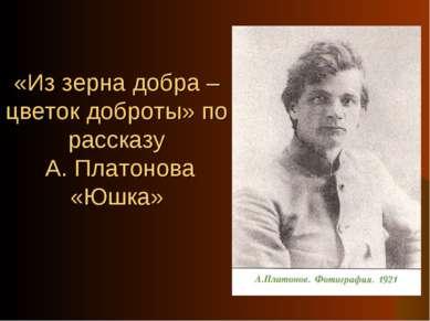 «Из зерна добра – цветок доброты» по рассказу А. Платонова «Юшка»