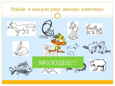 Найди в каждом ряду лишних животных МОЛОДЕЦ!!!
