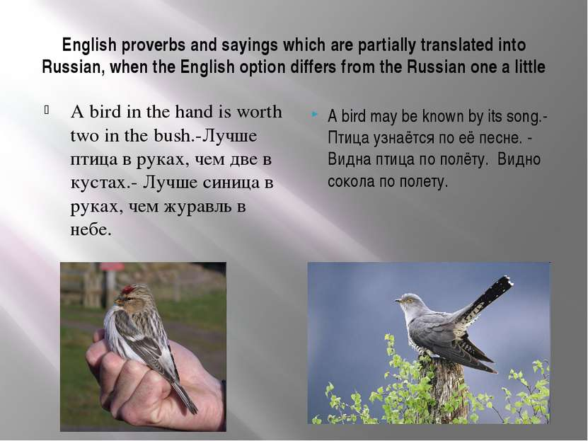 essay on proverbs in english Lessons about wisdom a free bible version and commentary on the book of proverbs in easyenglish.