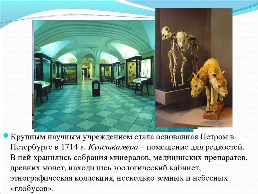 Крупным научным учреждением стала основанная Петром в Петербурге в 1714 г. Ку...