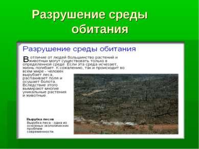 Разрушение среды обитания