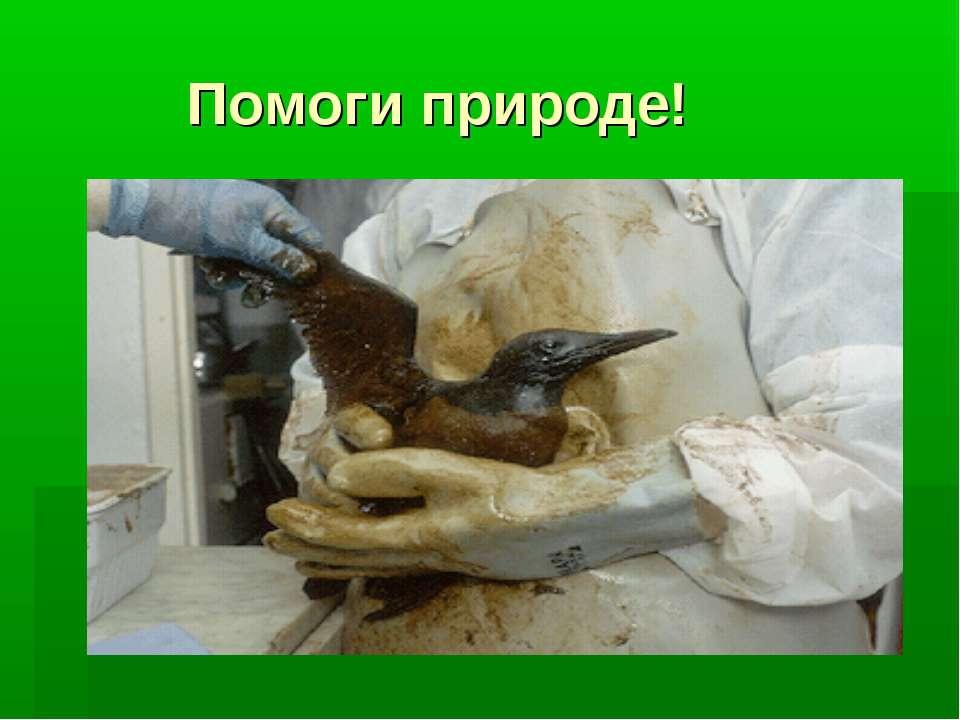Помоги природе!