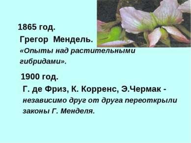 1865 год. Грегор Мендель. «Опыты над растительными гибридами». 1900 год. Г. д...