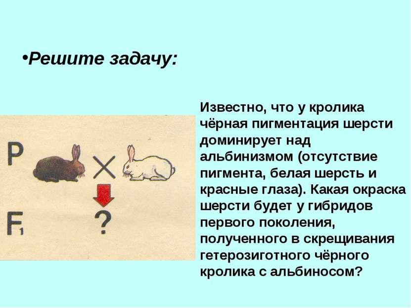 Решите задачу: Известно, что у кролика чёрная пигментация шерсти доминирует н...