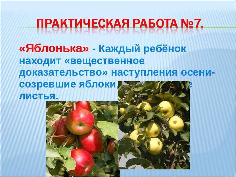 «Яблонька» - Каждый ребёнок находит «вещественное доказательство» наступления...