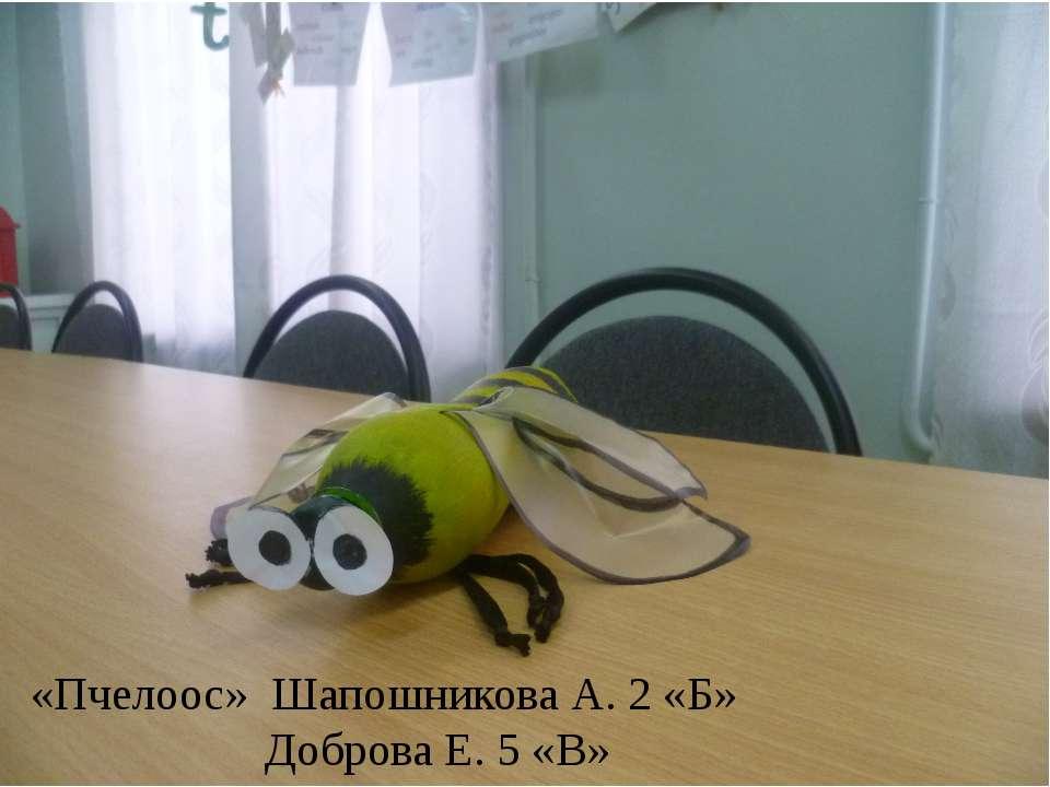 «Пчелоос» Шапошникова А. 2 «Б» Доброва Е. 5 «В»