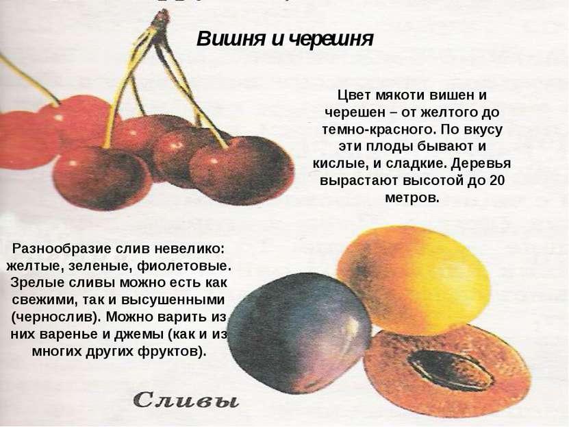 Цвет мякоти вишен и черешен – от желтого до темно-красного. По вкусу эти плод...
